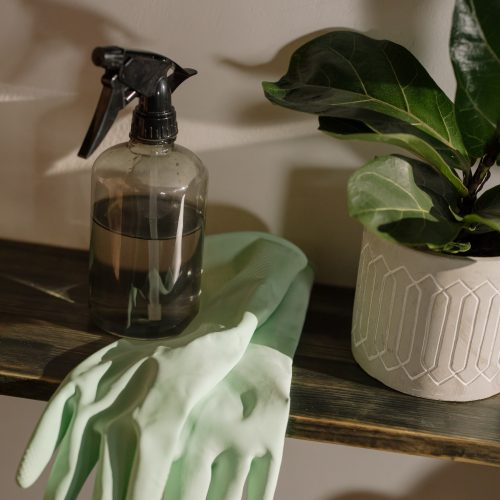 Spring Cleaning Tips For An Organized Home